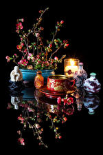 Pictures Still-life Drinks Candles Black background Cup Reflection Chaenomeles japonica Food