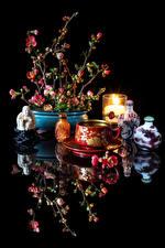 Bilder Stillleben Getränke Kerzen Schwarzer Hintergrund Tasse Spiegelung Spiegelbild Chaenomeles japonica Lebensmittel
