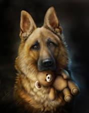Fotos Teddy Gezeichnet Schwarzer Hintergrund Shepherd Starren
