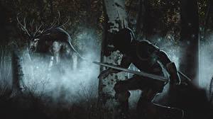 Hintergrundbilder The Witcher 3: Wild Hunt Monsters Geralt von Rivia Nacht Schwert Jagd