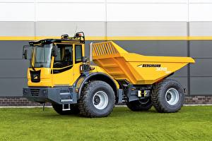 Picture Lorry Yellow 2016-17 Bergmann 3012 R PLUS automobile