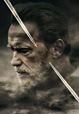 Bureaubladachtergronden Arnold Schwarzenegger Een man Bebaarde Hoofd Aftermath (2017) Films