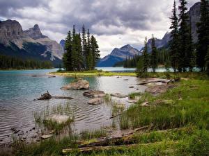Fotos Kanada Park Gebirge See Steine Landschaftsfotografie Jasper park Bäume Gras