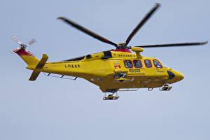 Fotos Hubschrauber Gelb Flug Luftfahrt