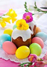 Fotos Feiertage Ostern Backware Kulitsch Primeln Eier das Essen