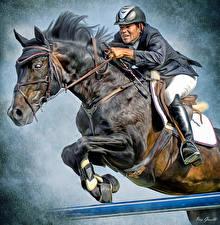 Pictures Horse Equestrian sport  Man Jump Helmet Sport