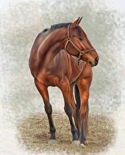 Hintergrundbilder Pferde Gezeichnet ein Tier