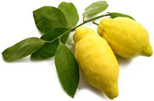 Hintergrundbilder Zitrone Blattwerk Ast Weißer hintergrund Lebensmittel