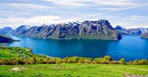 Hintergrundbilder Norwegen Gebirge Grünland Flusse Strauch Aurlands Fjord Natur