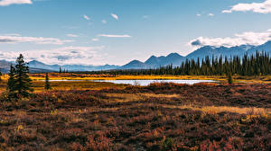 Images Landscape photography Mountains USA Alaska Rivers Grass Nature