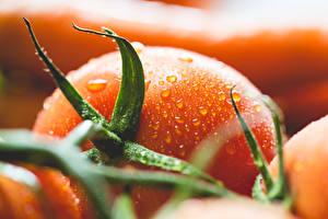 Hintergrundbilder Tomate Großansicht Makrofotografie Tropfen Lebensmittel