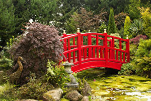 Wallpapers United Kingdom Parks Pond Bridges Stone Bush Mount Pleasant gardens Nature
