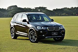 Picture BMW Black CUV Metallic F25 Cars