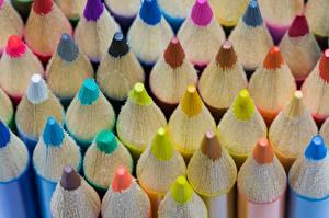 Fotos Hautnah Makro Bleistifte Mehrfarbige