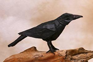 Bilder Krähen Vögel Papier Origami