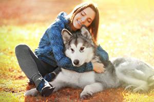 壁纸,,犬,西伯利亞雪橇犬,棕色的女人,微笑,坐,女孩,動物,