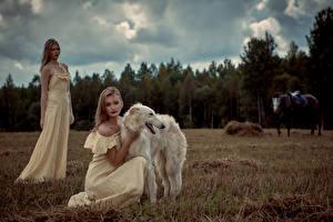 Hintergrundbilder Hunde Windhund 2 Kleid Russian hunting sighthound Mädchens Tiere