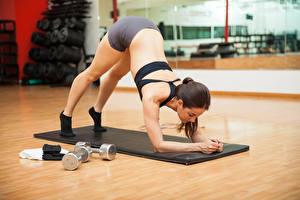 Fotos Fitness Braune Haare Körperliche Aktivität Rücken junge frau Sport