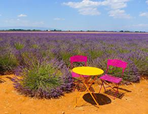 Bilder Frankreich Felder Lavendel Tisch Stuhl Puimichel Natur
