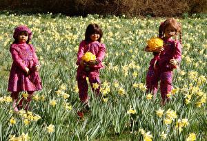 Bilder Park Frühling Narzissen Puppe Kleine Mädchen Grugapark Essen Natur