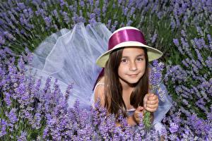 Hintergrundbilder Lavendel Kleine Mädchen Der Hut Blick Nett Kinder