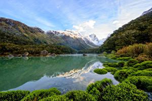 Picture New Zealand Mountain Lake Grass Lake Mackenzie Nature