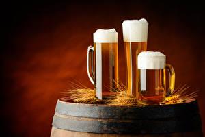 Hintergrundbilder Bier Fass Becher Drei 3 Schaum Ähre Lebensmittel