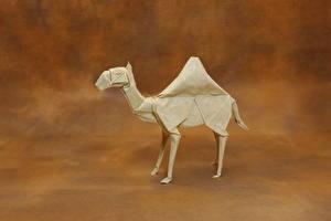 Fotos Altweltkamele Papier Origami Tiere