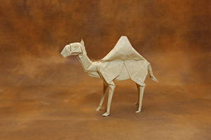 Fotos Kamele Papier Origami Tiere