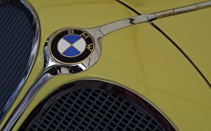 Wallpaper Closeup BMW Logo Emblem Cars