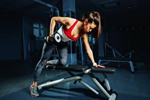 Fotos Fitness Braunhaarige Hantel Trainieren junge Frauen Sport