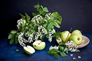 Hintergrundbilder Blühende Bäume Äpfel Ast Lebensmittel