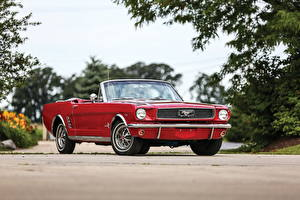 Fotos Ford Retro Rot Cabriolet Mustang 1966 Autos