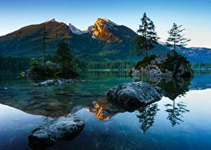 Photo Germany Lake Mountain Landscape photography Bavaria Moss Trees Berchtesgaden Nature