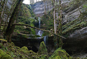 Bilder Luxemburg Wasserfall Felsen Laubmoose Ast Mullerthal Trail Natur