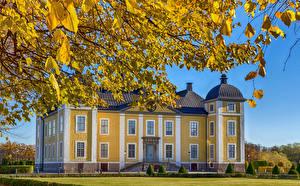Bilder Stockholm Burg Schweden Herbst Ast Stromsholm