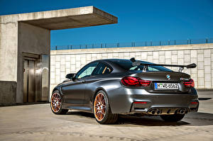 Pictures BMW Back view Grey GTS F82 2015 auto
