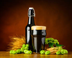 Fotos Bier Weizen Echter Hopfen Flaschen Trinkglas Schaum Ähre Lebensmittel