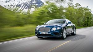 Picture Bentley Motion Blue Continental 2015 Cars