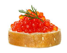 Fotos Butterbrot Meeresfrüchte Kaviar Brot Nahaufnahme Weißer hintergrund das Essen