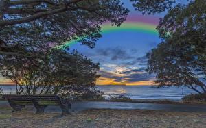 Bureaubladachtergronden Engeland De kust Zonsopgangen en zonsondergangen Regenboog Tuinbank Boomtakken Christchurch