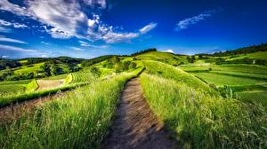 Images Fields Germany Landscape photography Sky Grass Trail Nature