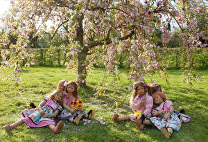 Images Germany Parks Flowering trees Doll Little girls Grass Frock Grugapark Essen Nature