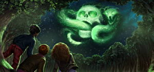 Desktop wallpapers Harry Potter and the Goblet of Fire Skulls Snake Magic Three 3 Boys Little girls Night Trees Movies Fantasy