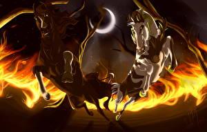 Fotos Pferde Gezeichnet Feuer Mondsichel Zwei Lauf Nacht ein Tier