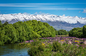 Photo New Zealand River Mountains Lupinus Landscape photography Twizel River MacKenzie Country Nature