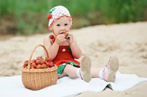 Fotos Erdbeeren Kleine Mädchen Starren Sitzend Weidenkorb kind