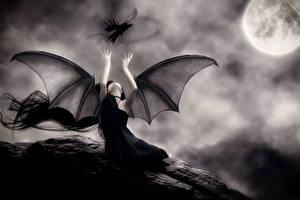Bilder Vampire Krähen Gotische Flügel Nacht Mond Schwarzweiss Fantasy