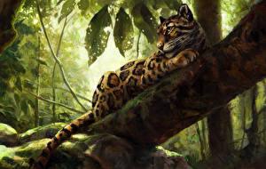 Hintergrundbilder Große Katze Leopard Gezeichnet Ast Baumstamm Tiere