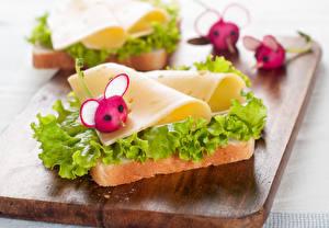 Fotos Butterbrot Radieschen Käse Brot Schneidebrett Lebensmittel